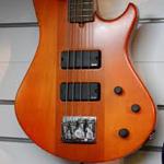Godin BG-4 bass m.case – fjernlager