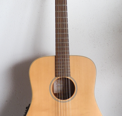 Takamine EG510s 12-String
