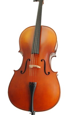 Höfner H 5 cello.
