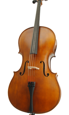 Höfner Cello H 8
