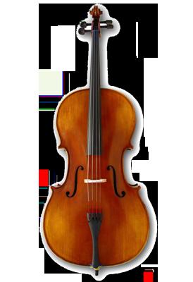 Tonareli cello, skolemodel flere størrelser.