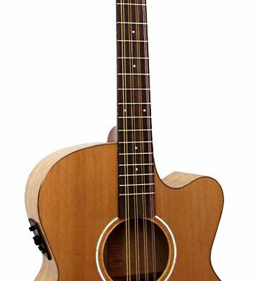 Oktav mandolin, Ashbury.