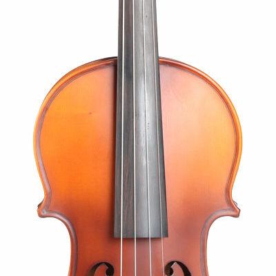 Fidelius semi-acoustic el-violin / viola.