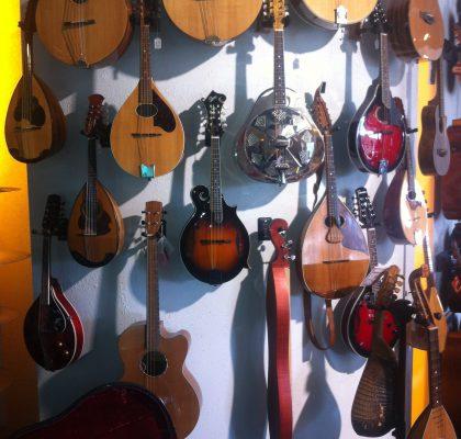 Stort udvalg i hele mandolin-familien.