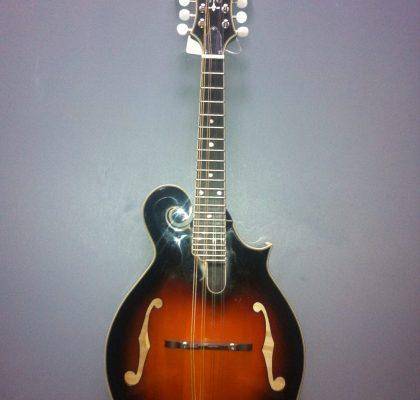 Rover RM-75 mandolin