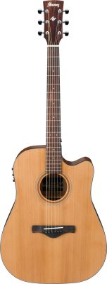 Ibanez Artwood westernguitar, natural low gloss AW65-LG +