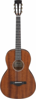 Ibanez Parlor Artwood westernguitar, open pore natural AVN9-OPN +