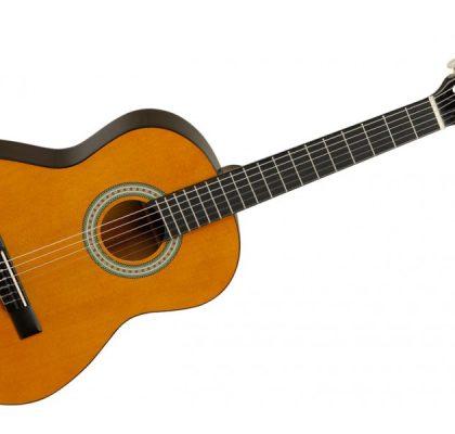Tanglewood 3/4 klassisk guitar DBT34 Nat
