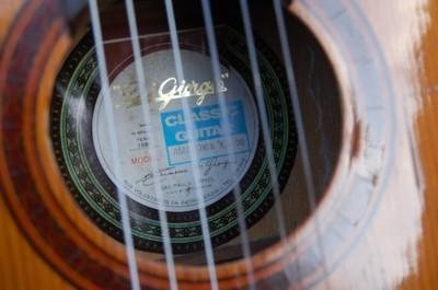 Di Giorgio Amazonia no. 30, håndbygget brasiliansk vintage-guitar