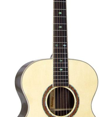Ashbury parlour guitar m. bag GR52176