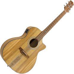 Randon akustisk guitar RGI-M4CE