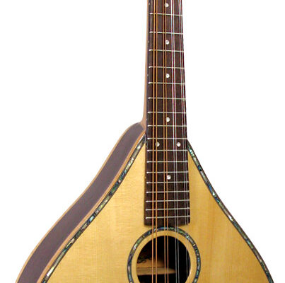 Ashbury Celtic Mandolin, Electro