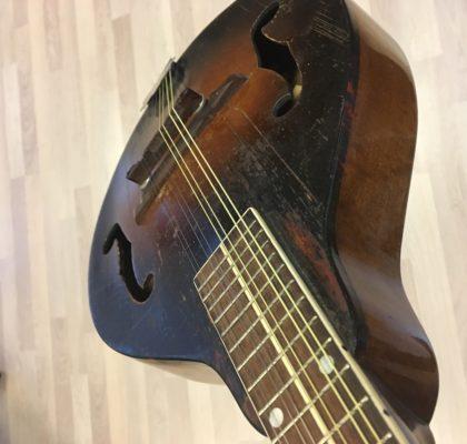 Kalamazoo A style mandolin.