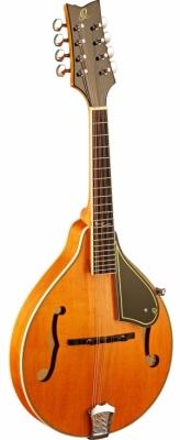 Ortega mandolin RMA50VY