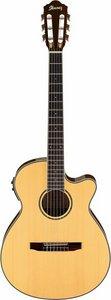 Ibanez AEG10NII-NT, Klassisk guitar